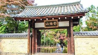 鹿王院嵐山京都/Rokuon-inTempleKyoto