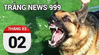 Chó không rọ mõm...Tính sao... | TRẮNG NEWS 999 | 02/03/2017