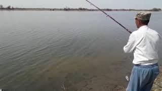 Весенняя рыбалка Туркестан 2018. Сазаны 2