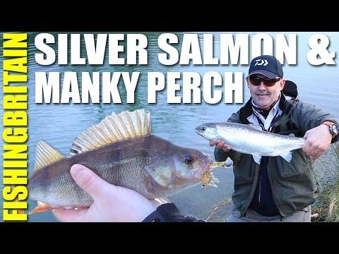 Fishing Britain – Land Locked Salmon & Urban Loch Perch