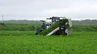 人参収穫機HN2400改