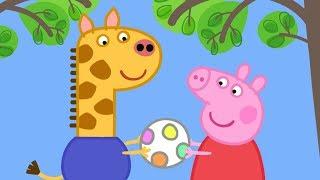 Peppa Pig English Episodes in 4K | Gerald Giraffe! | 1 Hour   #169