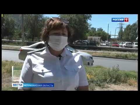 В Астраханской области Управлением Россельхознадзора выявлены очаги произрастания карантинного сорного растения