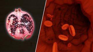 So reinigst du deine Arterien auf natürliche Weise – Granatapfelsaft für starke Blutgefäße