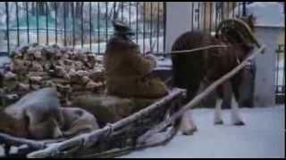 """Обложка на видео - фильм """"Рождественские истории"""" - Софи"""