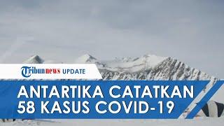 Sempat Jadi Tempat Teraman dari Covid-19, Antartika Kini Catat 58 Kasus dari Pangkalan Militer Chili