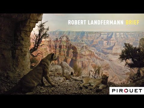 Robert Landfermann BRIEF - The Recording Session online metal music video by ROBERT LANDFERMANN
