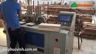 MÁY LÀM MỘNG MANG CÁ ĐUÔI ÉN CNC 3 tính năng Woodmaster
