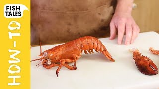 How To Kill, Cook & Clean A LOBSTER | Bart Van Olphen