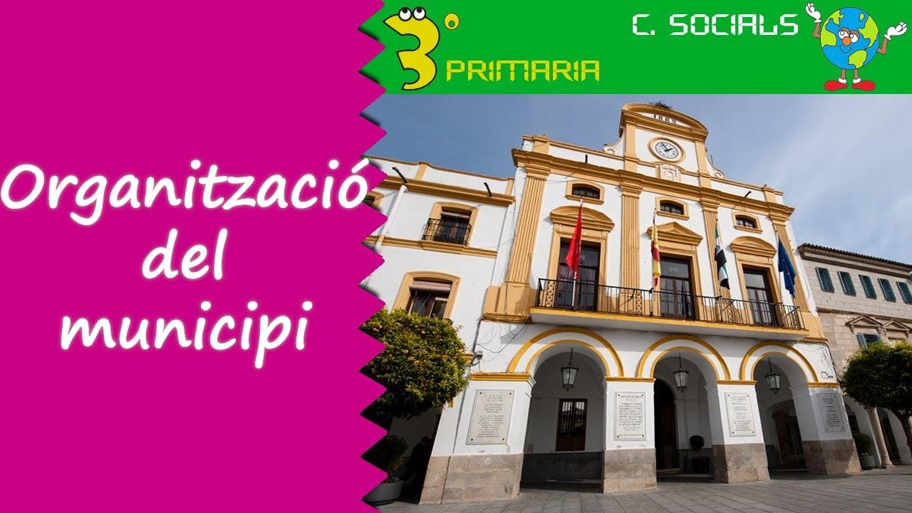 Ciències Socials. 3r Primària. Tema 3. L'organització del municipi