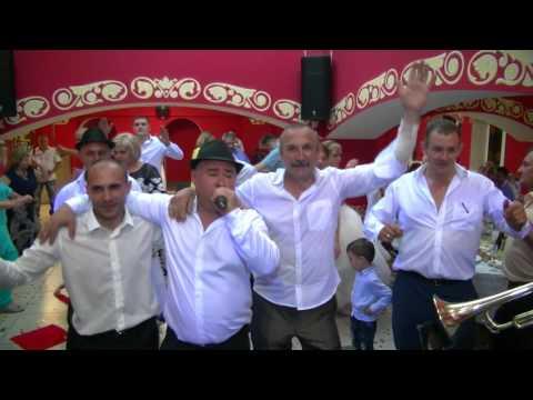 Живая музыка русско-молдавская в москве музыканты на свадьбы корпоративы свадьбы банкеты.