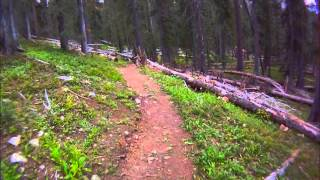 POV of the entire Greysil trail.  Thanks to the local who adopted this trail.