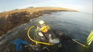 Ziggy Marley good old days - Diving at Beadnell with Boards and Bikes co uk