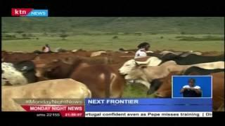 The Next Frontier: The Kenyan livestock market