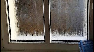 Hohe Luftfeuchtigkeit in Wohnung  6 Tipps