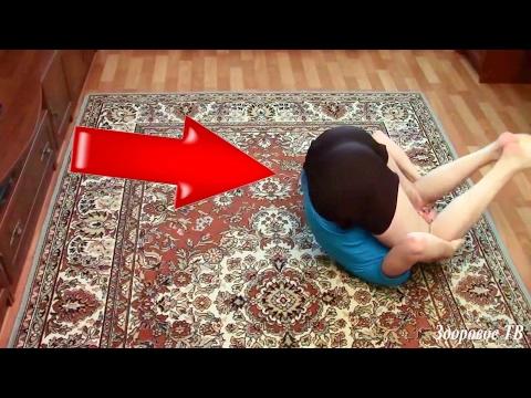 Как правильно наносить мазь при шейном остеохондрозе