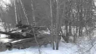 Т-80. Хабаровск. 49 км. 2.MPEG