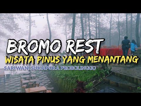 Bromo Rest, Wisata Hutan Pinus Di Sariwani  Sukapura