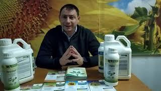 СТИМПО - Стимулятор Роста для листовой подкормки обработки риса, жита, овса, тритикале. Норма 20-25 мл/га. от компании ТД «АВС СТАНДАРТ УКРАЇНА» - видео 1