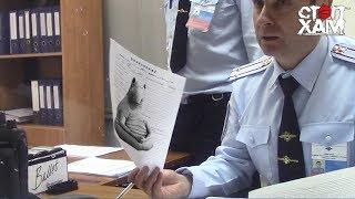СтопХам - По встречке в полицию 🚓🚑
