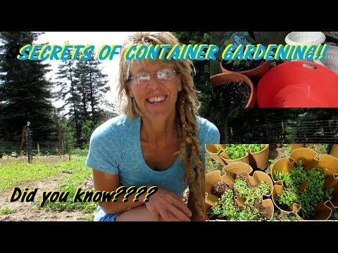 THE SECRET TO SUCCESSFUL CONTAINER GARDENING!