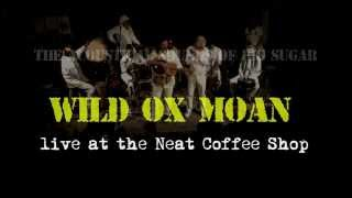 Wild Ox Moan - The Acoustical Sounds of Big Sugar