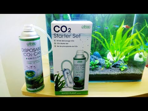 Ista CO2 Starter Set Review – Cheap CO2 Diffuser kit