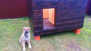 Смотреть онлайн Как сколотить собачью будку для щенка