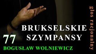 77 Bogusław Wolniewicz BRUKSELSKIE SZYMPANSY