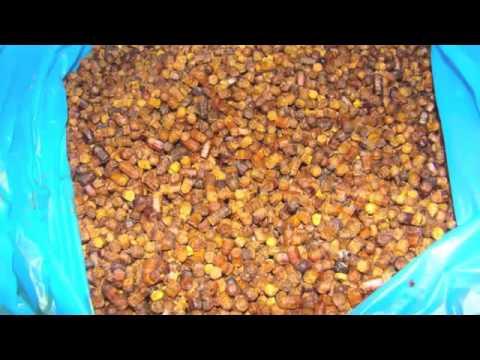 Пчелиная Перга Для Похудения