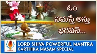 Namaste Astu Bhagavan - Lord Shiva Mantra Chant (11Times