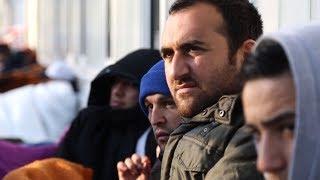 أكثر من نصف مليون سوري يتلقون المساعدات في ألمانيا