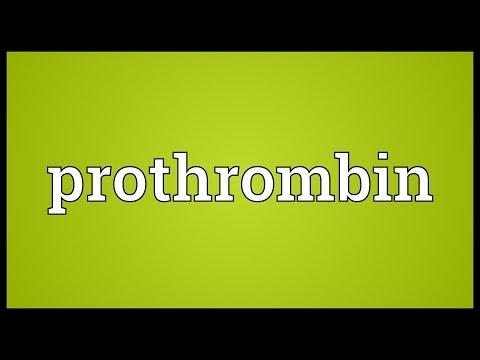 การรักษา thrombophlebitis hirudotherapy