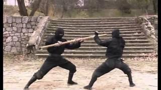 Ninjutsu Ninja Defesa