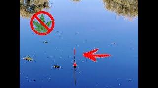 Рыбалка на карася НА ЗАПРЕЩЕННУЮ ПРИКОРМКУ рыбалка 2018