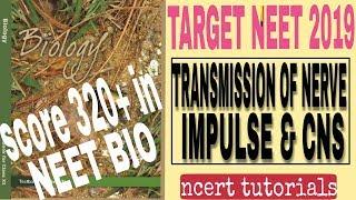 n.e.e.t k liye ncert biology kaise padhe .ncert tutorial biology class 11th chapter 21