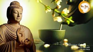 Nhạc Thiền Tĩnh Tâm - Thiền, thưởng trà, học tập, nghe tĩnh tâm ngủ ngon rất tuyệt vời
