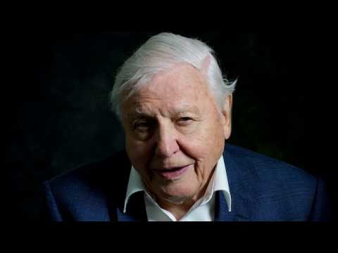 David Attenborough: A life on Our Planet trailer. Coming in Spring 2020 on Netflix. The reality of climate change and how important education on this subject is.