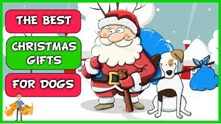 Ultimate Guide to the Best Christmas Gifts For Dogs 2019