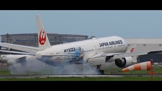 ✈✈大荒れの成田空港強風横風着陸windshearCrosswindlanding8連発NaritaAirport!!RWY16Rさくらの山