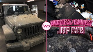 Deep Cleaning a Girl's DIRTY Jeep   Hairiest/Dirtiest Jeep EVER   Satisfying Car Detailing!