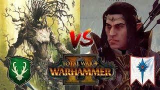 Wood Elves vs High Elves   DURTHU & THE SHADOW KING - Total War Warhammer 2