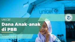 UNICEF, Organisasi PBB Dibidang Dana Kesejahteraan Anak-anak