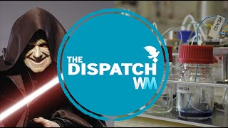 Ukrainian Sith Lord and Electronic Blood: The News You Missed - The Dispatch Ep. 1