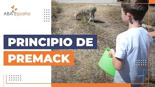 Secuencia verificada de ABA España – Principio de Premack