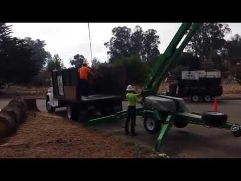 Ace Tree Service video