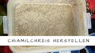 Chiasamen, Chiamilchreis - Infos und Rezept