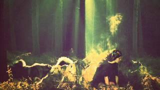 Phosphorescent- Wolves