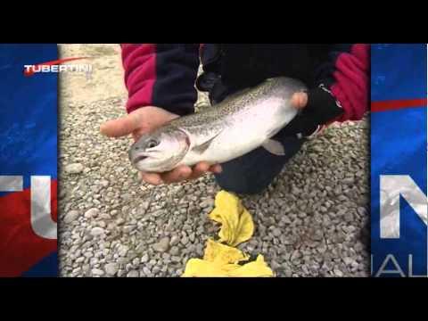 Le canne da pesca russe pendono