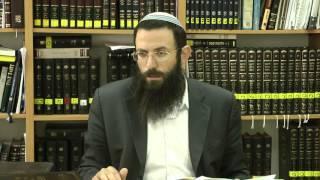 66 הלכות שבת או''ח סימן שכה סע' א-ד הרב אריאל אלקובי שליט''א